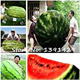 2017 New 30Pcs giant Watermelon Seeds ,Sweet Taste Vegetables and fruit seeds, very big delicious, Garden Plants Photo, bestseller 2018-2017 new, best price $9.99 review