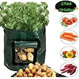 Grow Bags 2 Pack 10 Gallon Garden Potato Grow Bags Breathable growing bags with Flap and Handles Waterproof Vegetable planting Planter Bag Fabric plant Pot for Onion, Potato, Flower, Carrot, Tomato Photo, bestseller 2018-2017 new, best price $25.99 review